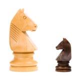 Szachowi rycerze odizolowywający - pojęcie Fotografia Stock