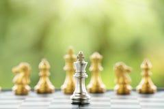 Szachowy kawałek na Chessboard Obraz Royalty Free