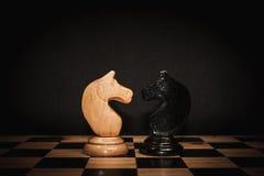 Szachowy koń Fotografia Stock