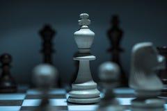Szachowy królewiątko na Chessboard zdjęcie royalty free