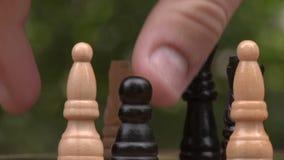 szachy grać zbliżenie zbiory