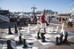 szachy plenerowa Zdjęcia Royalty Free