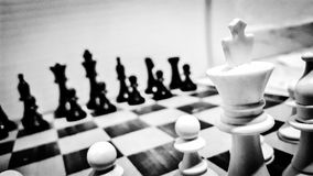 szachy W B&W obraz royalty free
