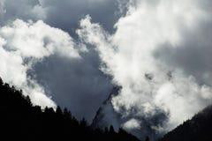 Szaleje kłoszenie w góry Fotografia Stock