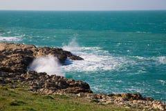 Szaleje na wybrzeżu Polignano klacza Fotografia Royalty Free