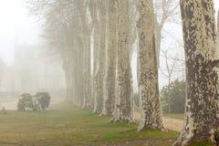 szaletu kraju dzień mgłowy francuz Fotografia Royalty Free