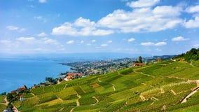 Szalety blisko Lavaux winnicy Tarasowego wycieczkuje śladu Szwajcaria Zdjęcie Stock