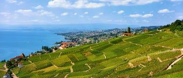 Szalety blisko Lavaux winnicy Tarasowego wycieczkuje śladu w Szwajcaria Obraz Royalty Free