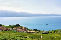 Szalety przy Lavaux winnicy Tarasowym wycieczkuje śladem Szwajcaria Zdjęcia Stock