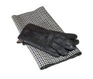 Szalik i rękawiczki Obraz Royalty Free