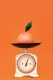 Szalkowy pomiarowy grapefruitowy ciężar Zdjęcia Stock