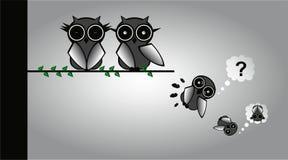 Szalone sowy ilustracji