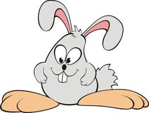 szalony królik obrazy stock