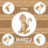 Szalony małpa wzór Obrazy Royalty Free