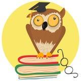 Szalony sowy obsiadanie na książkach Obraz Royalty Free