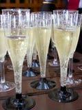 szampańscy szkła ja obrazy stock