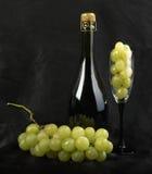 szampański finograd Zdjęcia Royalty Free