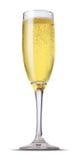 szampański szkło zdjęcie stock