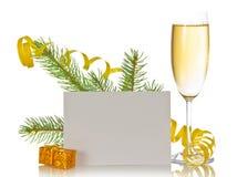 Szampański wina szkło, sosny gałąź z serpentyną Fotografia Stock