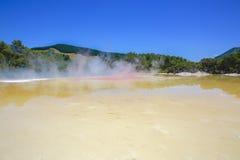 Szampański basen w Wai-O-Tapu Geotermicznej krainie cudów, Rotorua, NZ Obrazy Royalty Free