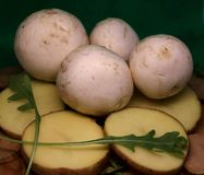 Szampinion ono rozrasta się z kartoflanymi klinami na drewnianym stojaku obraz stock
