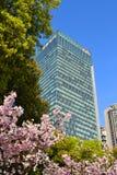 Szanghaj Citigroup wierza Zdjęcie Royalty Free
