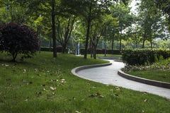 Szanghaj krajobraz w parku zdjęcia royalty free
