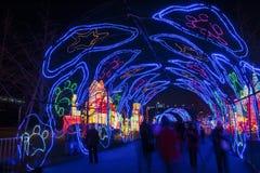 2016 Szanghaj Magicznego lampionu Międzynarodowy Karnawałowy miasto światło Obrazy Stock