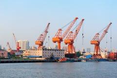 Szanghaj port zdjęcia royalty free
