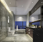 Szanghaj wysokogatunkowy apartment& x27; s lapidarny styl domowa toaleta Obrazy Royalty Free