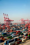 Szanghaj Yangshan FTA zbiornika terminal Głębokowodny Portowy Ekonomiczny dźwigowy udźwig góruje Obrazy Stock