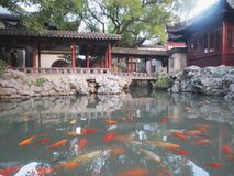 Szanghaj yuyuan ogr?d zdjęcie royalty free