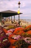 Szanuje Plażowego pawilon, Boston Zdjęcia Royalty Free