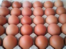 Szara taca jajka z wiele jajkami fotografia stock