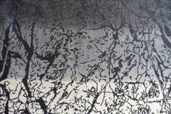 Szarawa dżersejowa tkanina z abstraktów uderzeń drukiem Zdjęcia Stock