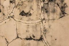 Szarego bielu stara betonowa ściana z pęknięciami, czarnego mech plamami i foremką, Szorstkiej powierzchni tekstura obrazy stock