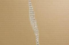 szargający tło karton obraz stock
