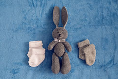 Szarość królika zabawkarscy kłamstwa Zdjęcia Royalty Free