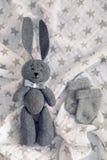 Szarość królika zabawkarscy kłamstwa Fotografia Stock