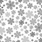 Szarość kwiat Fotografia Stock