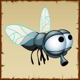Szarość latają z ogromnymi oczami, śmieszny insekt ilustracja wektor
