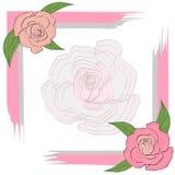 Szarość menchii rama z różami dla kartka z pozdrowieniami, zaproszenie, na półprzeźroczystym różanym tle, poślubia Zdjęcie Stock