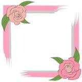 Szarość menchii rama z różami dla kartka z pozdrowieniami, zaproszenie, tekst na bielu, poślubia Zdjęcie Stock