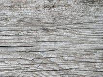 szarość texture drewnianego Zdjęcie Stock
