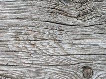 szarość texture drewnianego Obraz Royalty Free