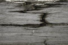 Szarość wietrzejący drewno z suchą spróchniałością Fotografia Stock