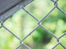 Szarości farba na metalu grille ogrodzeniu z de skupiał się zielonego natury tło Fotografia Royalty Free
