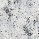 Szarości ścienna bezszwowa farba pęka tło teksturę Obraz Stock