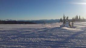 Szarpnięcie szczytu snowmobile zdjęcie stock