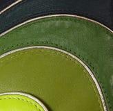 szartrez zielony rzemienny olivedrab wzór Obraz Royalty Free